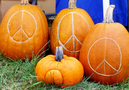 Peace Pumpkins at Garlic and Arts Festival (Sienna Wildfield)