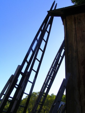 Fruit Orchard Ladders